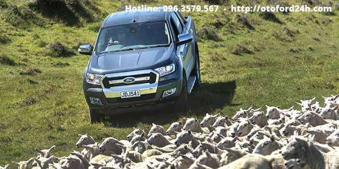 Hình ảnh Ford Ranger bán tải