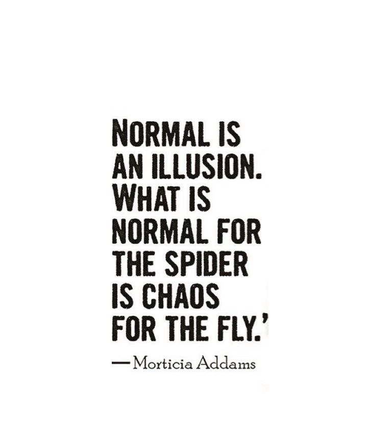 Normal is an illusion what is normal for the spider is chaos for normal is an illusion what is normal for the spider is chaos for the fly altavistaventures Choice Image