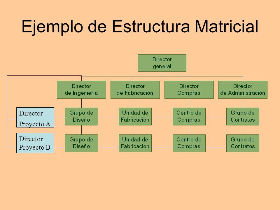 Departamentalización Matricial Estructura Organizacional