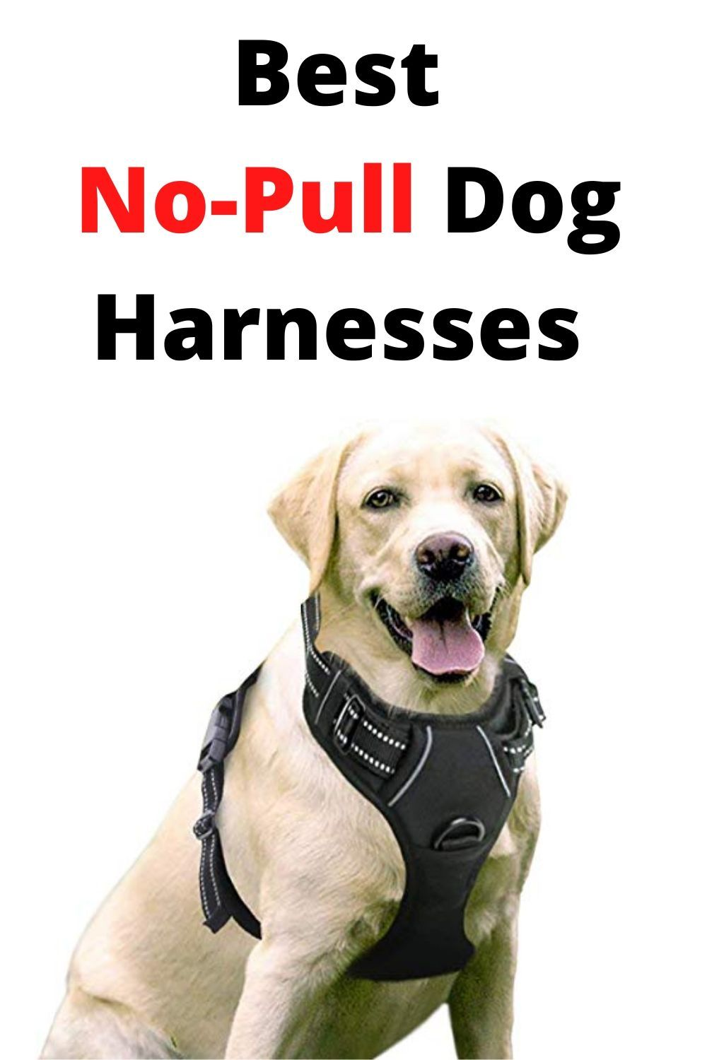 Best 5 no pull dog harnesses for all breeds dog pulling