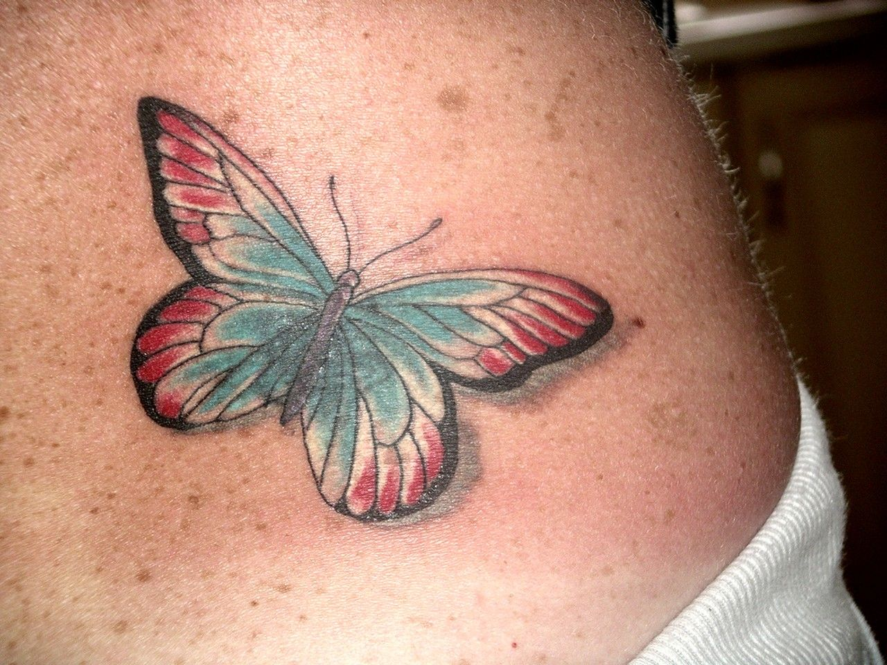 Girl tattoo ideas butterfly images of butterfly tattoos   tattoo  back butterfly