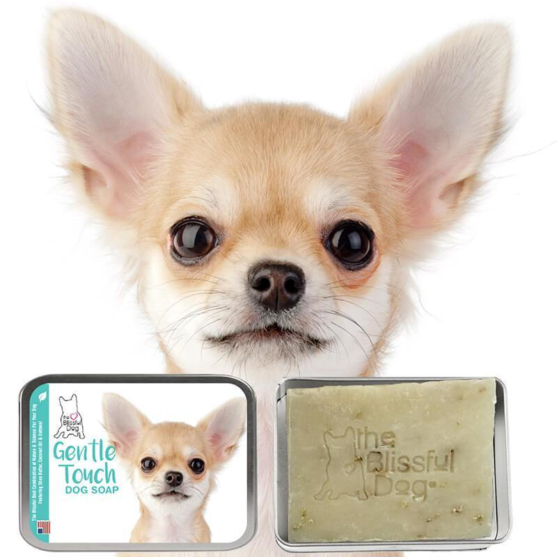 Chihuahua Gentle Touch Puppy Soap Chihuahua Dog Shaking Free