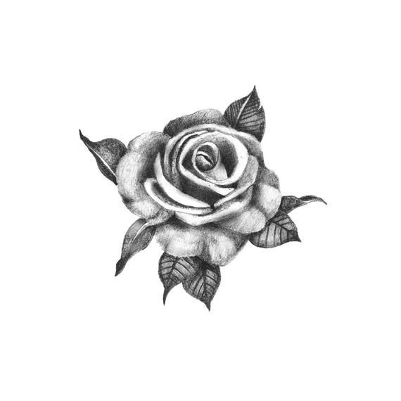 Rose Tattoos Meaning Realistic Rose Tattoo Black Rose Tattoos Rose Tattoos For Men