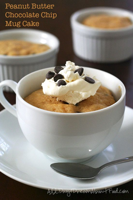 Low Carb Peanut Butter Chocolate Chip Mug Cake Recipe All Day I