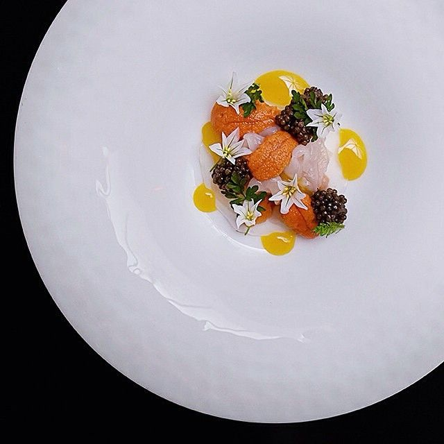 Australia-native Shaun Hergatt of restaurant Juni from NY introduces his Spring-inspired tasting menu, filled with the vibrant colors and absolutely gorgeous presentation. See more at http://theartofplating.com (link in profile) #FoodGallery Scallop, uni and caviar by @shergatt. by: @signebirck
