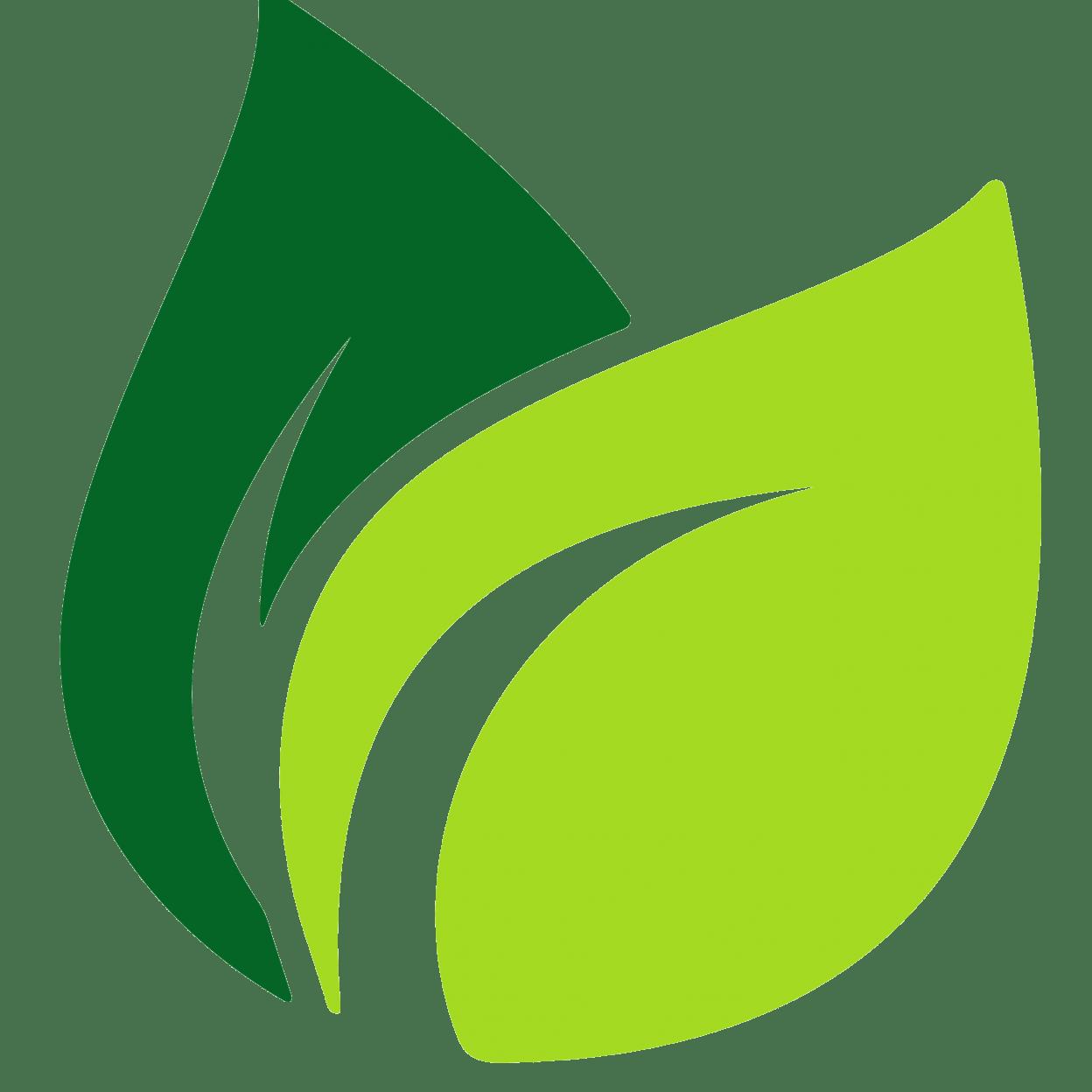Image Result For Leaf Vector Daun Desain Seni