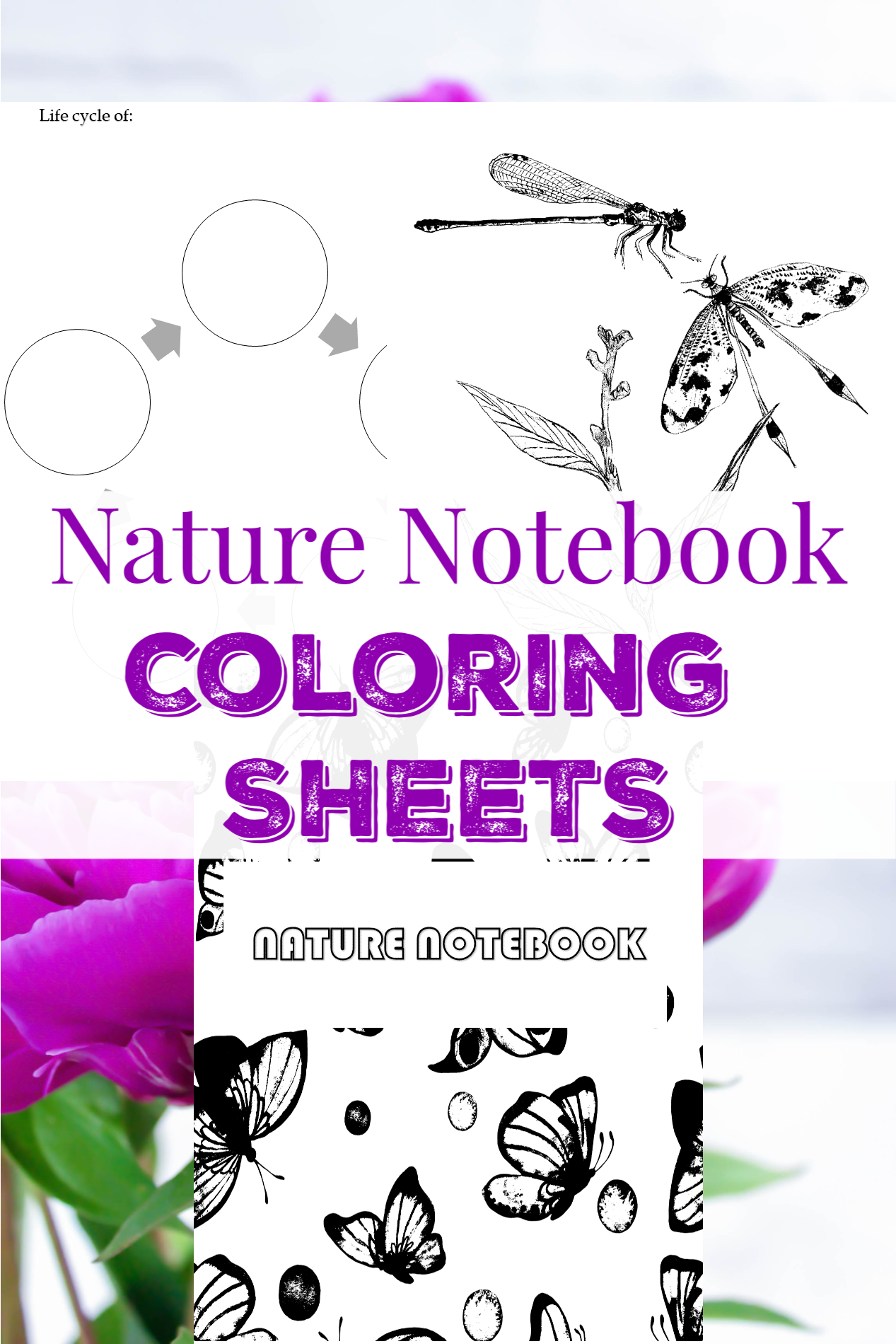 Start A Nature Journal This Spring Color The Cover