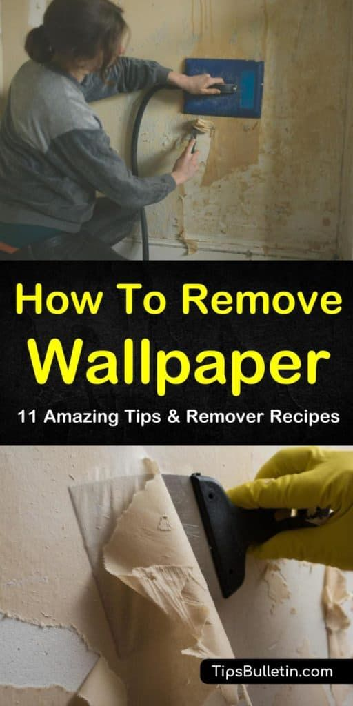 11 Amazing Ways to Remove Wallpaper in 2020 | Removable ...