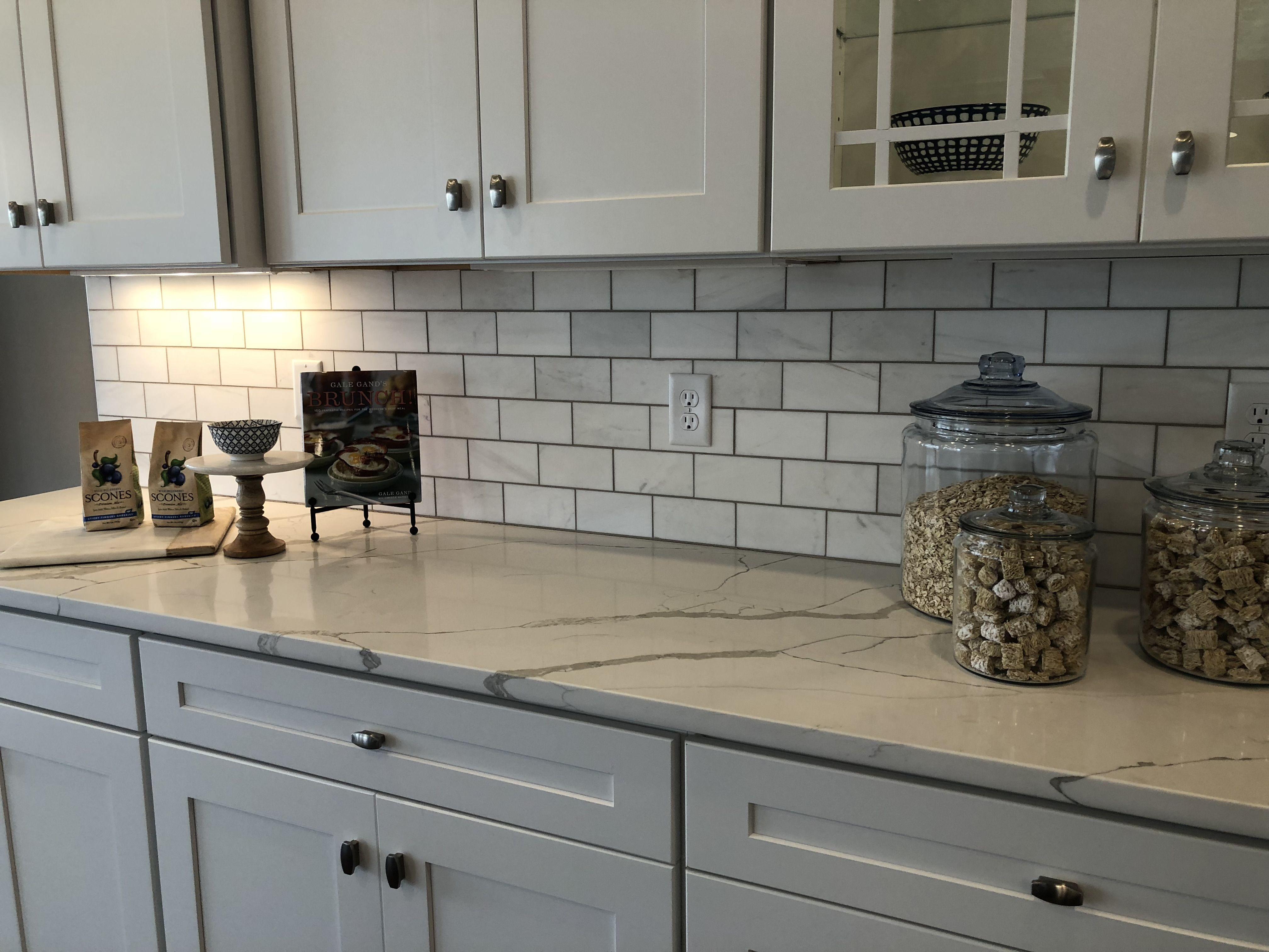 Contempo White Honed 3x6 Marble Backsplash Tiles Marble Tile