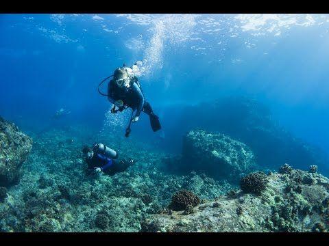 Kona Diving Company >> Big Island Diving With Kona Diving Company Kona Hawaii