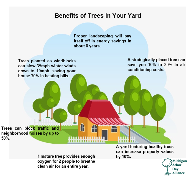 Trees Do So Much More Than Just Providing Habitat And Cleaning Air They Can Save You And Your House Money Arbour Day Trees To Plant Tree Care