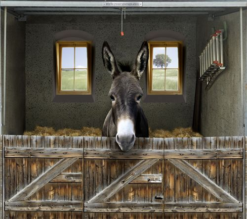 fotoplane f r garagentor esel garage mural donkey tiere animals pinterest. Black Bedroom Furniture Sets. Home Design Ideas