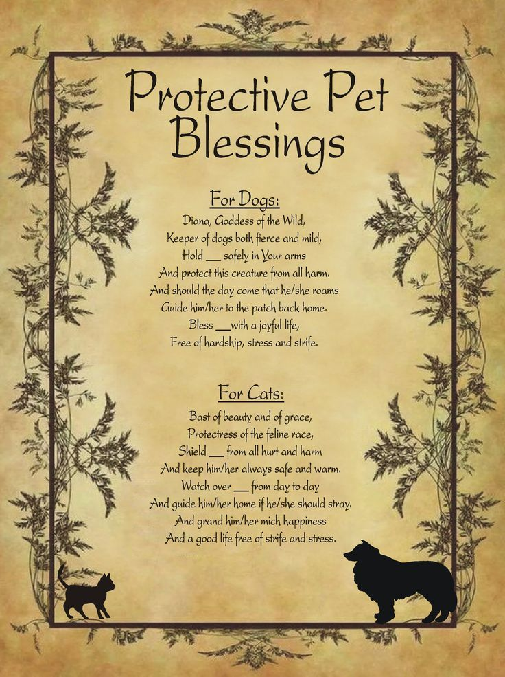 Protective Pet Blessings for Homemade Halloween Spell Book. #wiccanspells