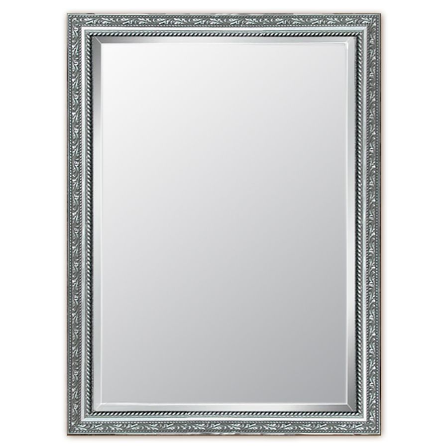 Style Selections 29-in x 41-in Silver Beveled Rectangle Framed ...