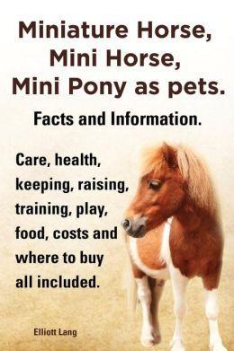 Miniature Mini Horse | Miniature Horse, Mini Horse, Mini