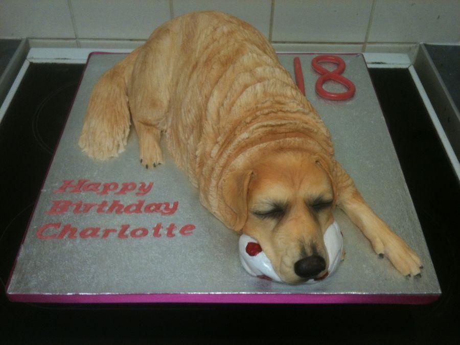 Golden Retriever Dog Cake Dog Cakes