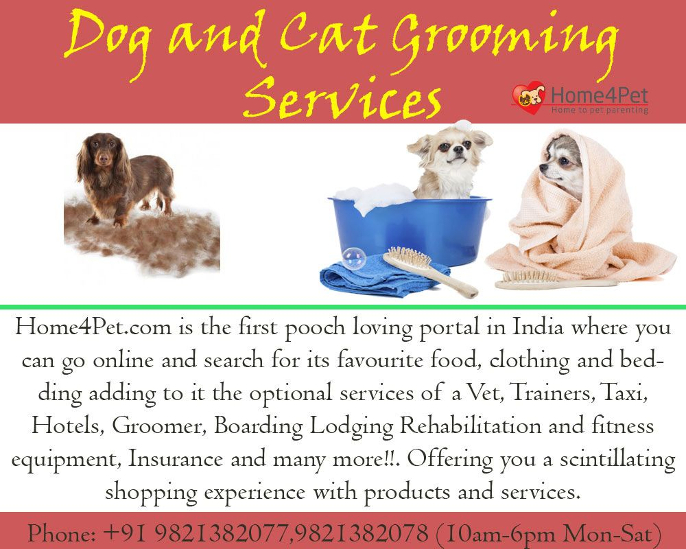 Http Home4pet Com Pet Services Pet Grooming If You Are Looking