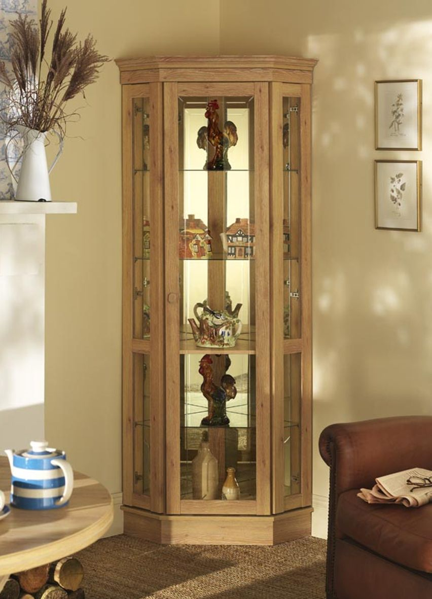 Corner Cupboard Designs Pictures Modern Cabinet