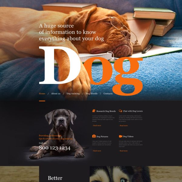Dog Muse Template 57622 Dogs Pet Websites Templates