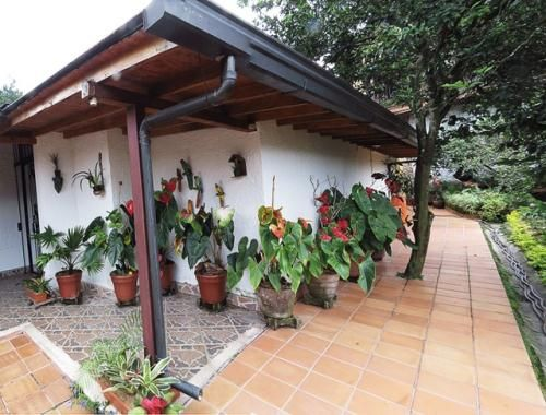 decoracion terrazas campestres Buscar con Google Casas