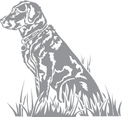 glass etching templates for free - glass etching stencil of labrador retriever in category