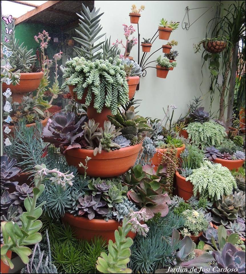 facebook by Sociedad Argentina de Horticultura