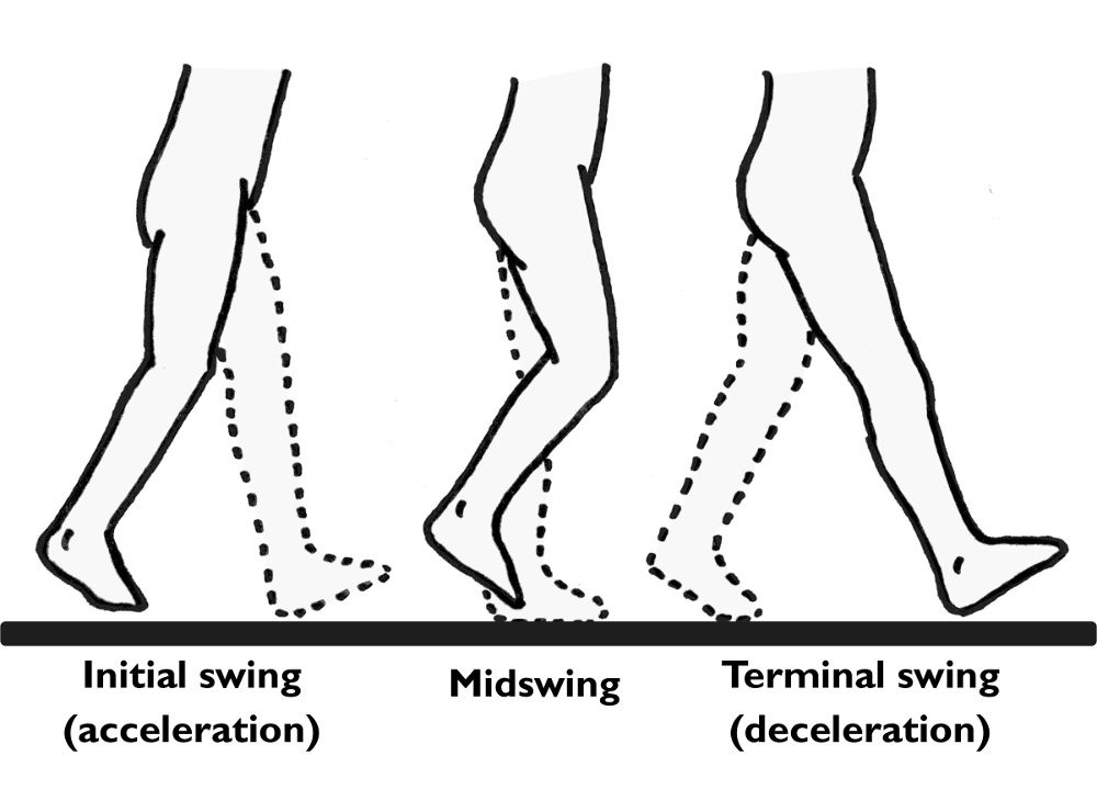 do you ever actually think about walking  stride length  restricted pelvic rotation  chances are