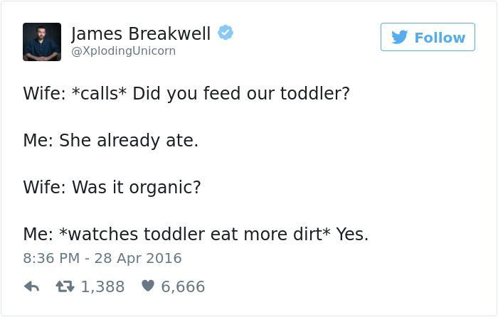 Funny Dad Tweets