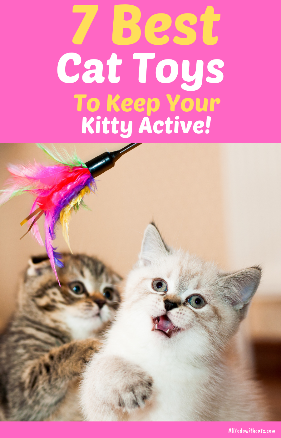 7 Best Cat Toys For Indoor Cats To Keep Your Kitty Active With Images Cat Toys Indoor Cat Cool Cats