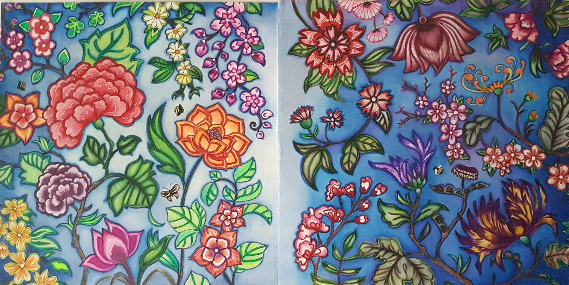 Double Page Finished Johanna Basford #coloringbooks world of