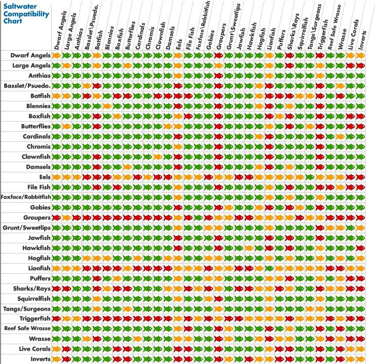 Compatibility chart aquarium for Freshwater fish compatibility