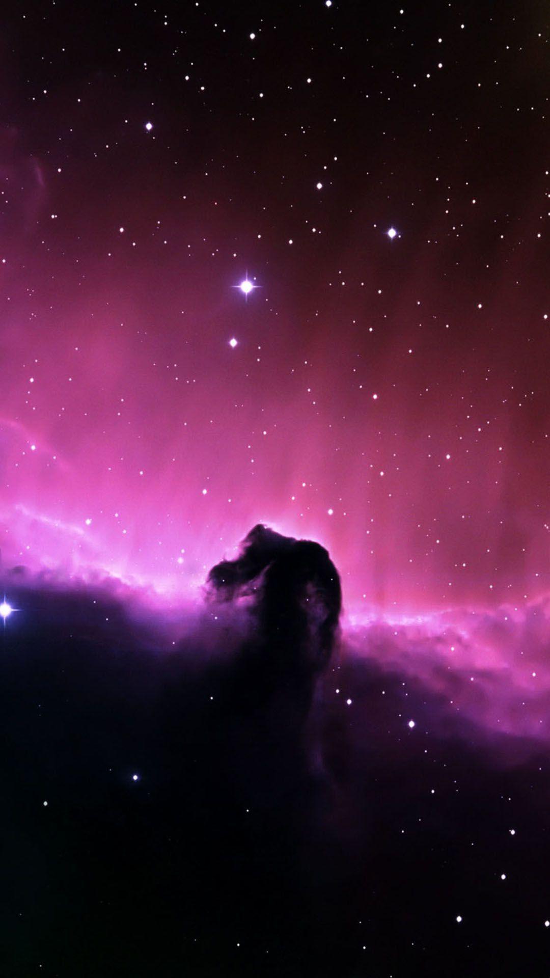 Fantastic Wallpaper Horse Pink - 8d39a756501b7b6b476103014089cb81  You Should Have_644976.jpg