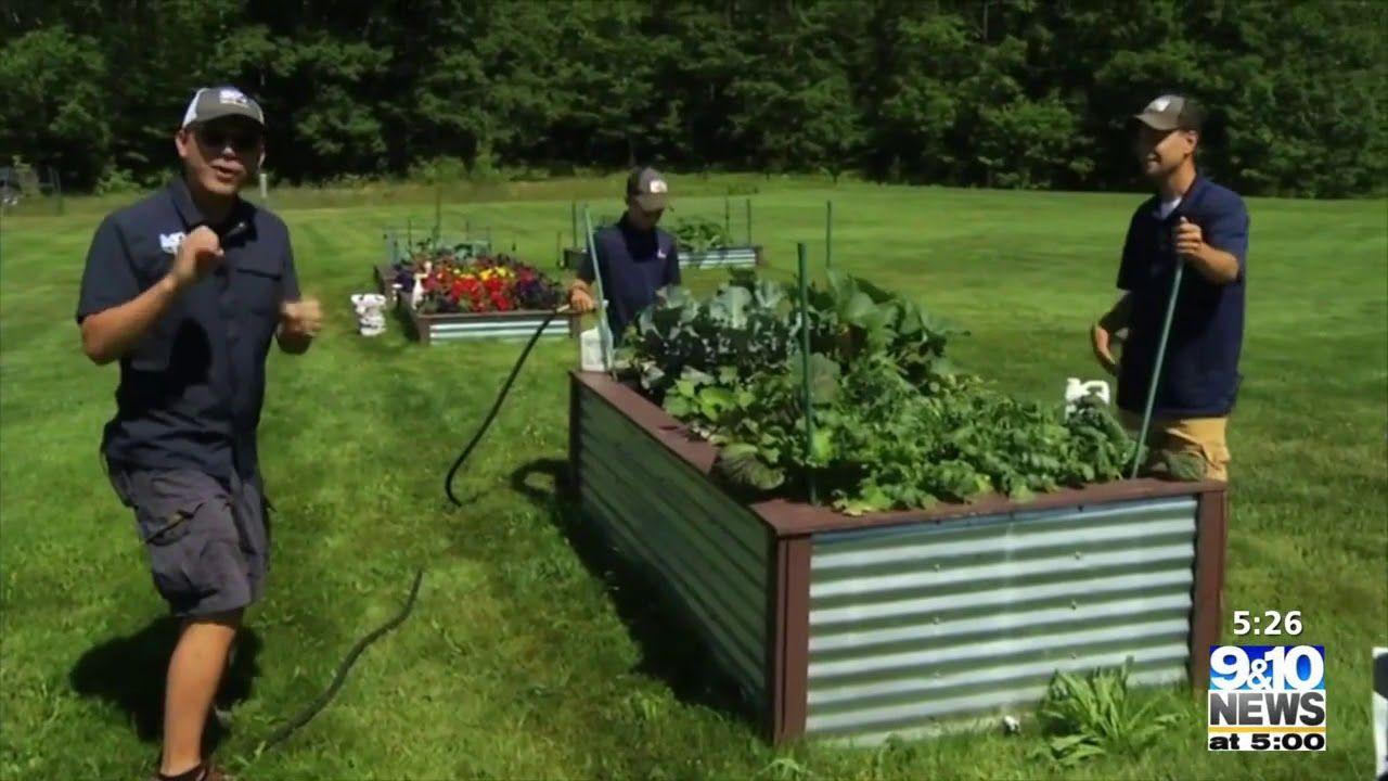 What S Growing With Tom Garden Update In 2020 Garden Growing Compost