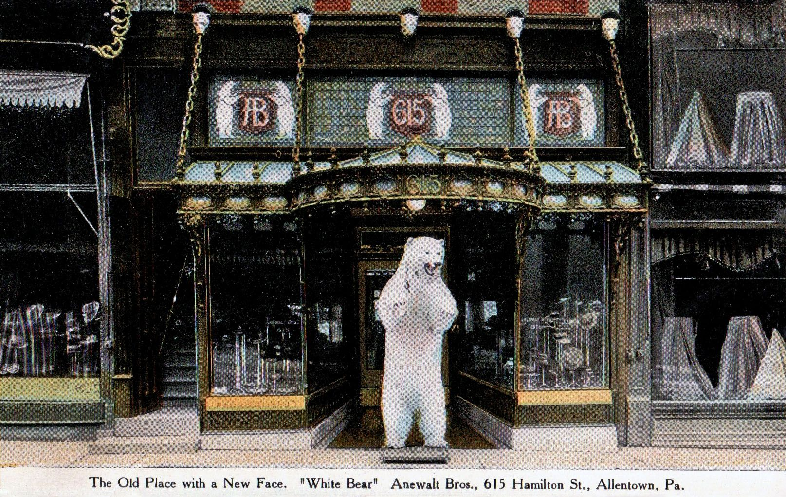 A Circa 1908 Postcard View Of Allentown Pa S White Bear Store Otherwise Known As Anewalt Brothers Located At 615 White Bear Allentown Pennsylvania Allentown