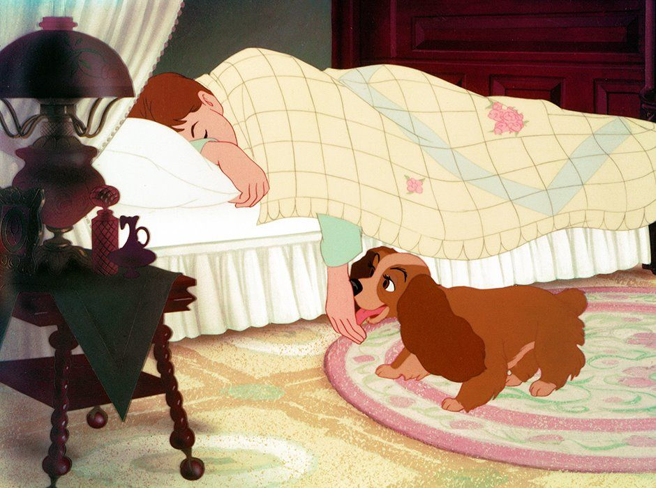 Jim Dear Lady Lady And The Tramp 1955 Can T You Explain To Lady About Sundays