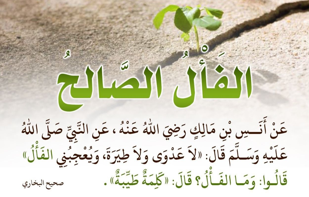 Pin By أحمد عبد الكريم On Hadith Islamic Quotes Hadith Islam