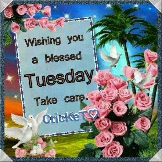 (((*G'mornin Tuesday*)))
