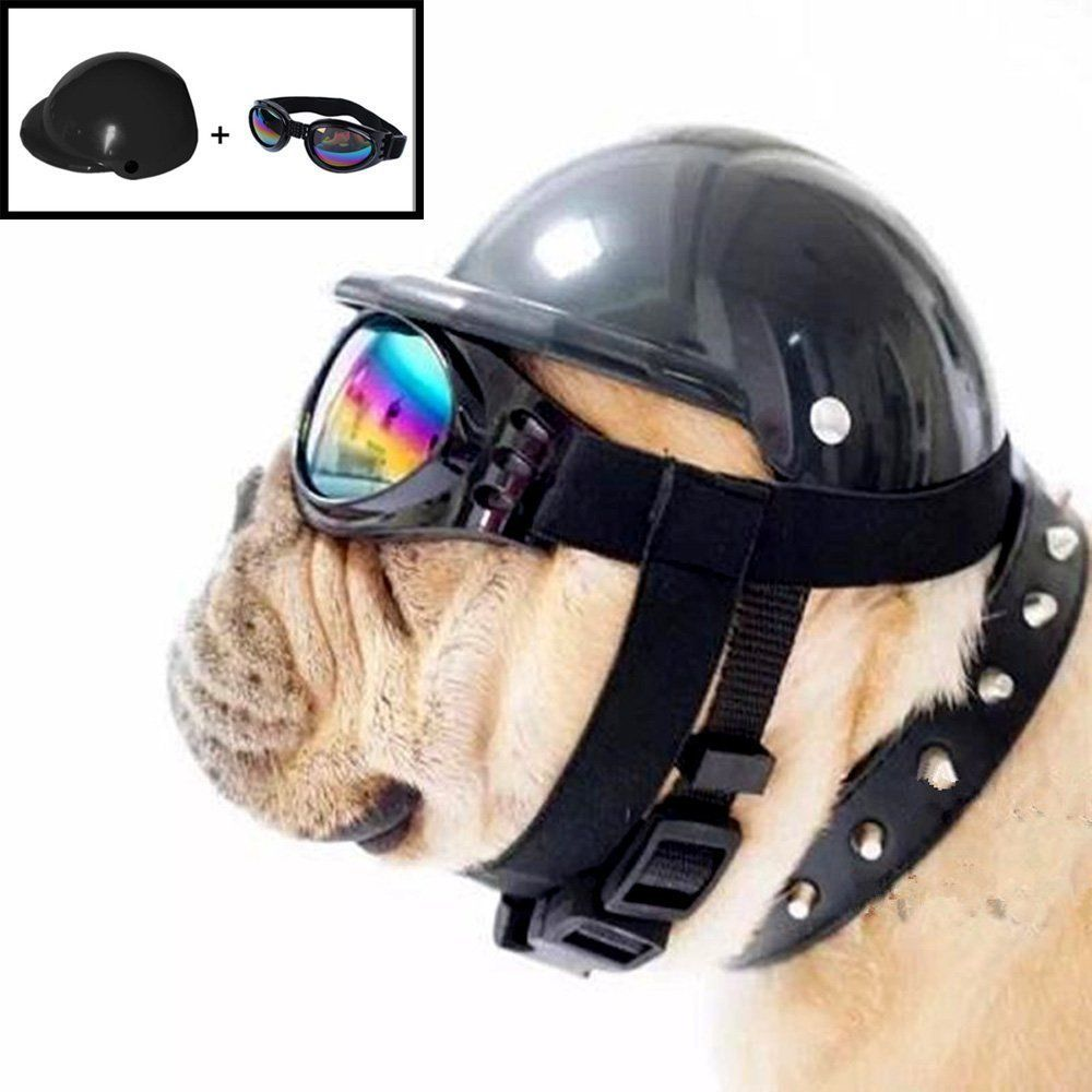 Misula Cute Dog Hat Helmet+Windproof Rainproof Aviator Sunglasses For Pet Cat Of | eBay