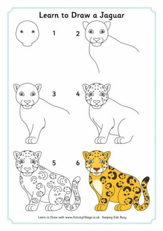 Learn To Draw A Jaguar Cute Drawings Animal Drawings