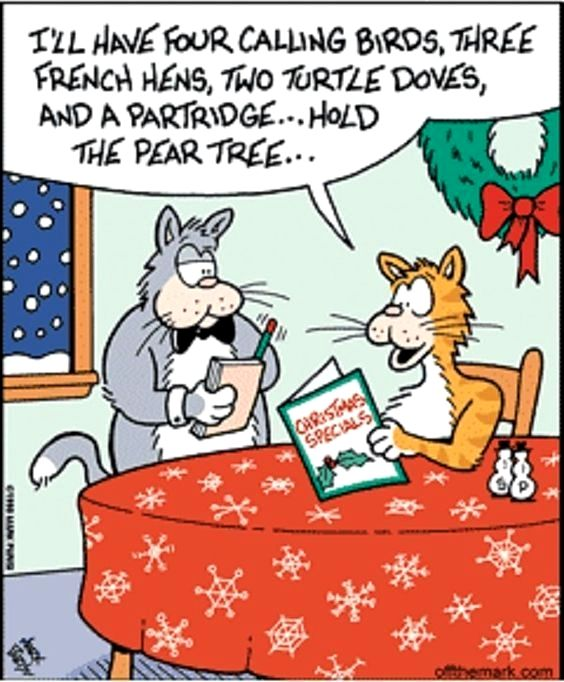 cat ordering Christmas specials at the cat-fe in 2020 ...
