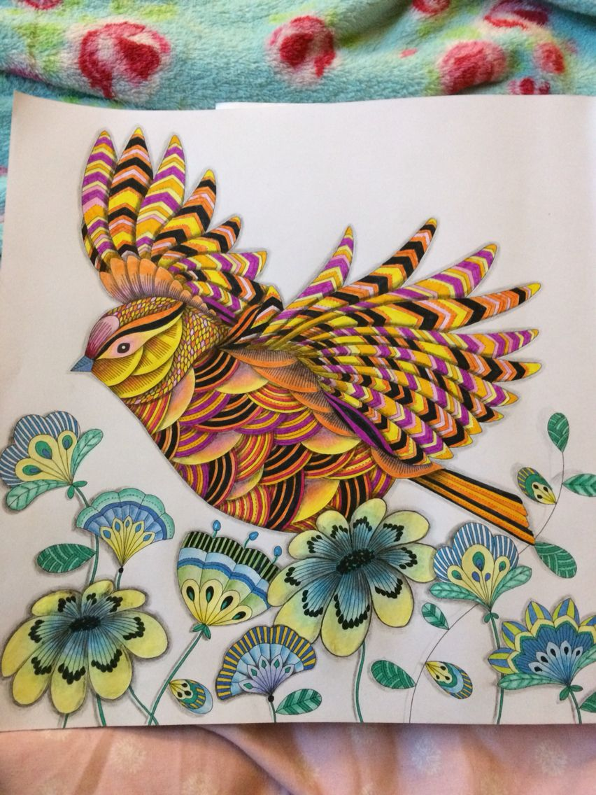 My Birdie Completed Background Or No Background Millie Marotta Animal Kingdom Colouring Book