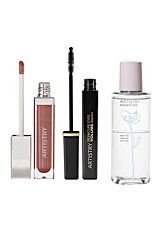 117546 Artistry Lips Lashes Special Offer With Volume Mascara