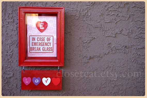 Valentine Gift  Funny Emergency Case  Love Lovers by ClosetCat, $18.00
