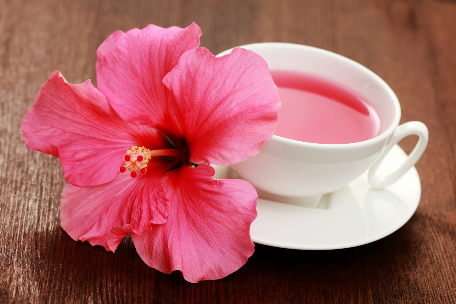 Hibiscus tea is made from dried vibrantly colored calyces of flowers hibiscus tea is made from dried vibrantly colored calyces of flowers of hibiscus plant it izmirmasajfo Choice Image