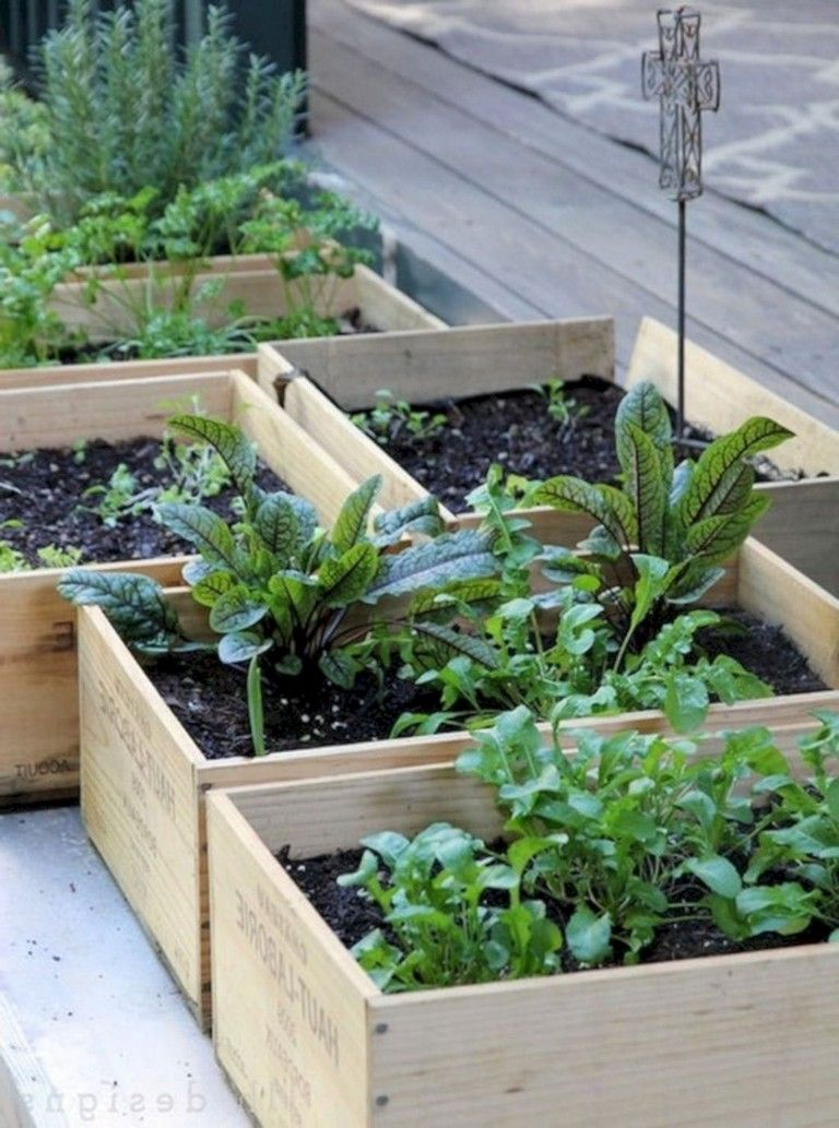 20 Best Productive Small Vegetable Garden Ideas For Your ...