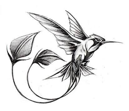 Image Result For Vintage Hummingbird Graphics