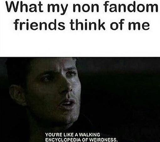 No This Is What All Living Things Think Of Me In General Supernatural Funny Supernatural Fans Supernatural Memes