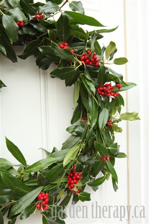 A Very Merry Fresh Holly Wreath For Christmas Christmas Tree