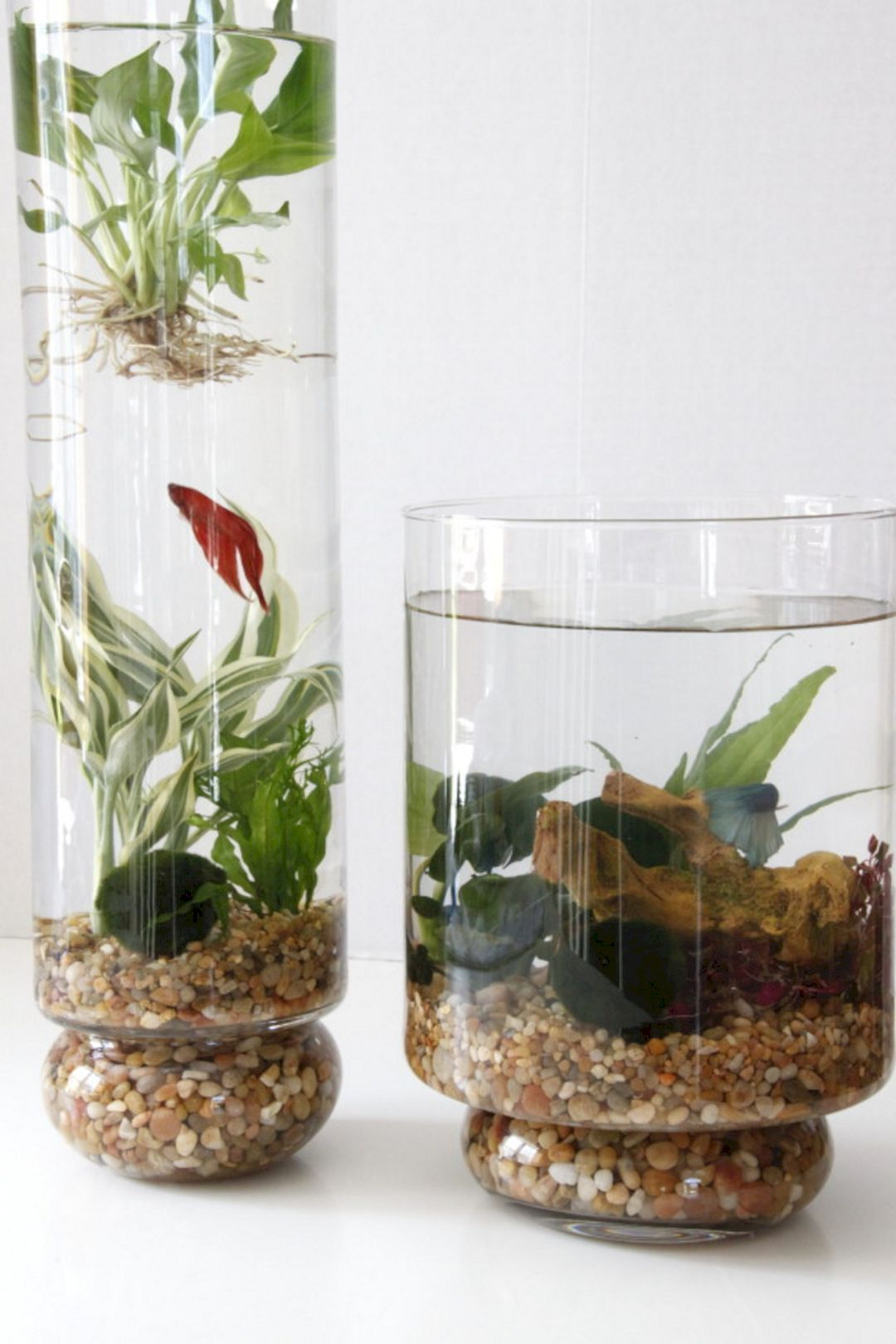 50+ Beautiful Small Aquarium Ideas To Increase Your Home Beauty ...