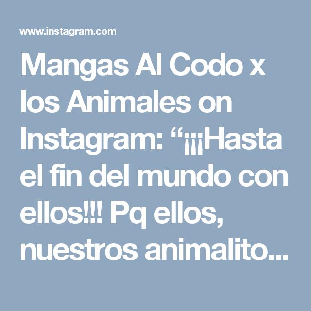 """Mangas Al Codo x los Animales on Instagram: """"¡¡¡Hasta el fin del mundo con ellos!!! Pq ellos, nuestros animalitos se merecen lo mejor  de nosotros. Cuéntanos! ¿cuál  es el nombre  de…"""""""